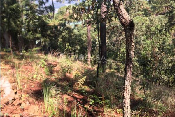 Foto de terreno habitacional en venta en  , monte alto, valle de bravo, méxico, 5414107 No. 02