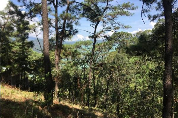 Foto de terreno habitacional en venta en  , monte alto, valle de bravo, méxico, 5414107 No. 03