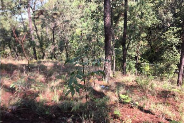 Foto de terreno habitacional en venta en  , monte alto, valle de bravo, méxico, 5414107 No. 04