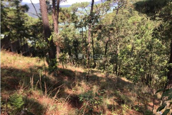 Foto de terreno habitacional en venta en  , monte alto, valle de bravo, méxico, 5414107 No. 05