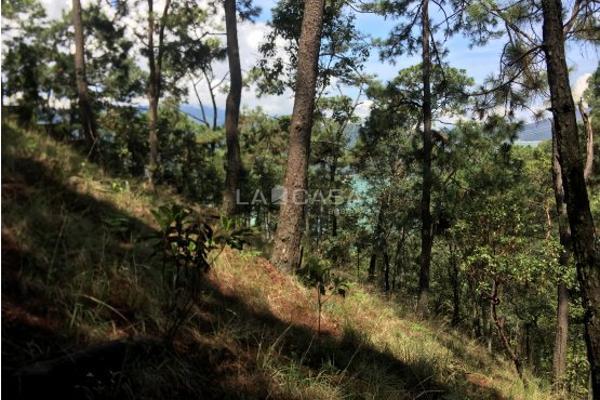 Foto de terreno habitacional en venta en  , monte alto, valle de bravo, méxico, 5414107 No. 06