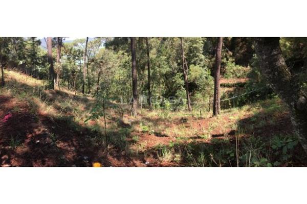 Foto de terreno habitacional en venta en  , monte alto, valle de bravo, méxico, 5414107 No. 08