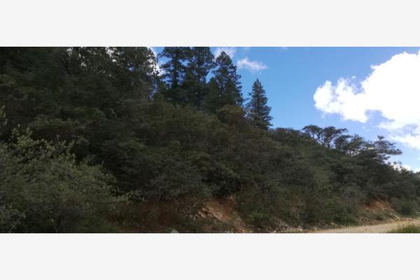 Foto de terreno habitacional en venta en monterreal , el 18 de marzo, arteaga, coahuila de zaragoza, 8671697 No. 04