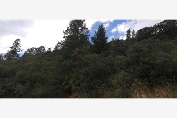 Foto de terreno habitacional en venta en monterreal , el 18 de marzo, arteaga, coahuila de zaragoza, 8671697 No. 21