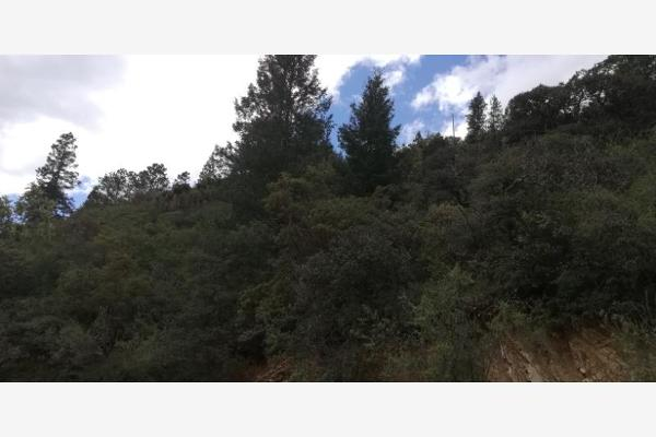 Foto de terreno habitacional en venta en monterreal , la efigenia, arteaga, coahuila de zaragoza, 8671697 No. 20
