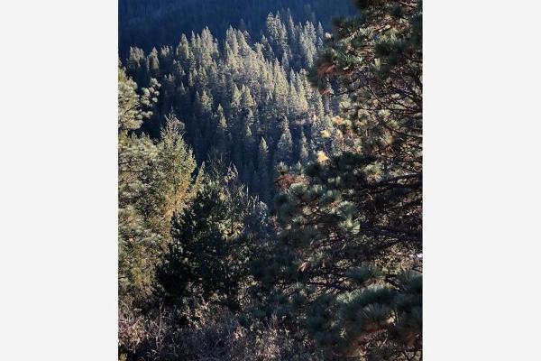 Foto de terreno habitacional en venta en monterreal , la efigenia, arteaga, coahuila de zaragoza, 8671697 No. 21