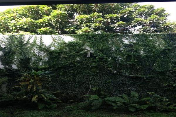 Foto de casa en renta en  , montes de ame, mérida, yucatán, 8100486 No. 13