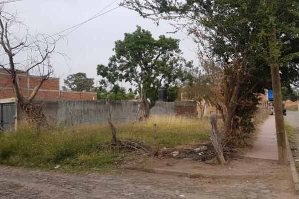 Foto de terreno comercial en venta en morelos , zapotlanejo, zapotlanejo, jalisco, 12272459 No. 02
