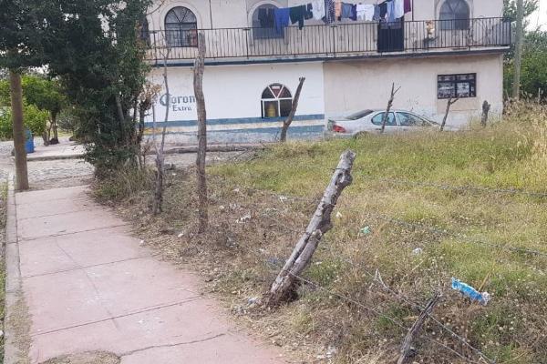 Foto de terreno comercial en venta en morelos , zapotlanejo, zapotlanejo, jalisco, 12272459 No. 04