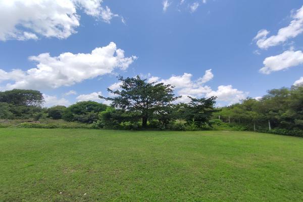 Foto de terreno habitacional en venta en  , mulchechen, kanasín, yucatán, 0 No. 02