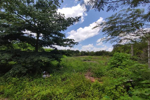 Foto de terreno habitacional en venta en  , mulchechen, kanasín, yucatán, 0 No. 10