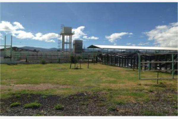 Foto de rancho en venta en municipio de otumba 0, san mateo, zempoala, hidalgo, 8790148 No. 12