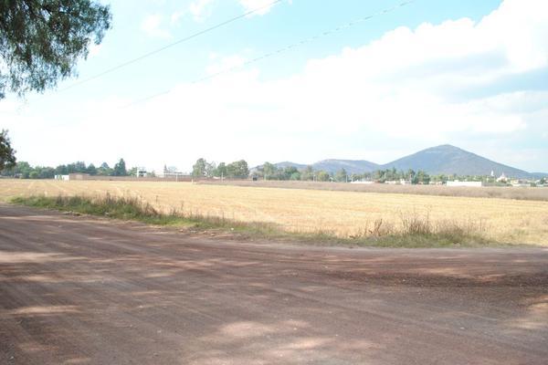 Foto de terreno comercial en venta en municipio de papalotla , texcoco de mora centro, texcoco, méxico, 20190040 No. 05