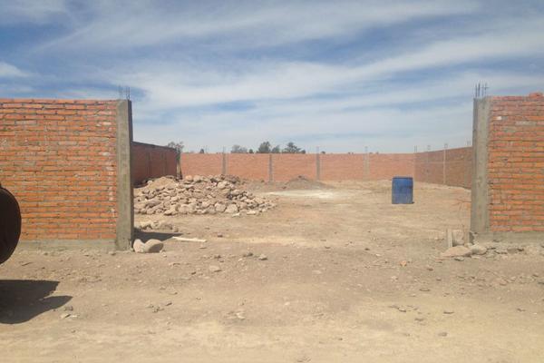 Foto de terreno industrial en venta en municipio libre , municipio libre, lagos de moreno, jalisco, 6153805 No. 03