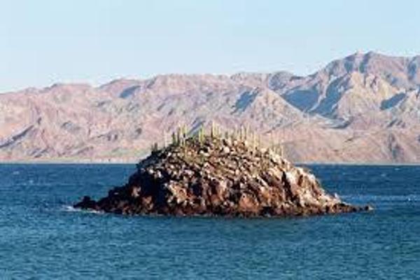 Foto de terreno comercial en venta en n/a , bahía de los ángeles, ensenada, baja california, 3097211 No. 05