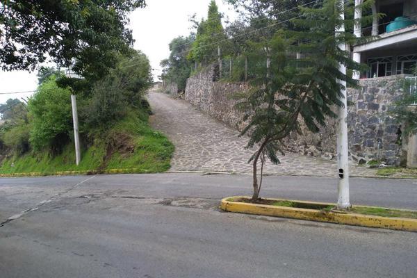 Foto de terreno habitacional en venta en nacional s/n , san martín, ecatzingo, méxico, 17303909 No. 03