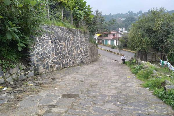 Foto de terreno habitacional en venta en nacional s/n , san martín, ecatzingo, méxico, 17303909 No. 04