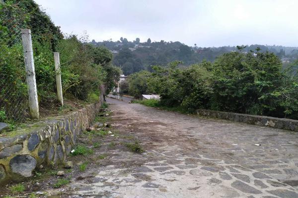 Foto de terreno habitacional en venta en nacional s/n , san martín, ecatzingo, méxico, 17303909 No. 05