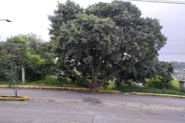 Foto de terreno habitacional en venta en nacional s/n , san martín, ecatzingo, méxico, 17303909 No. 10