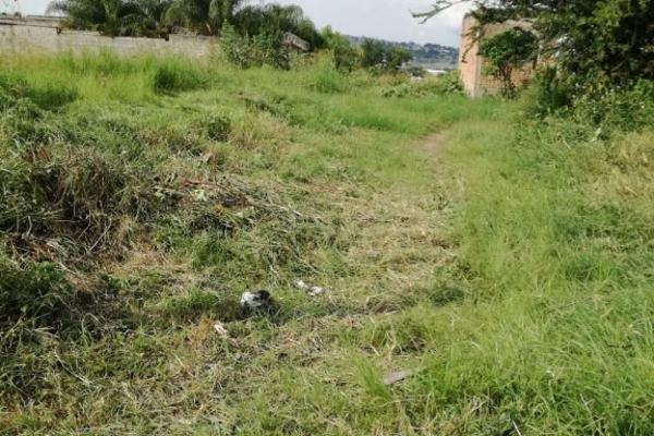 Foto de terreno habitacional en venta en nardo s/n , las juntas, san pedro tlaquepaque, jalisco, 5920293 No. 10