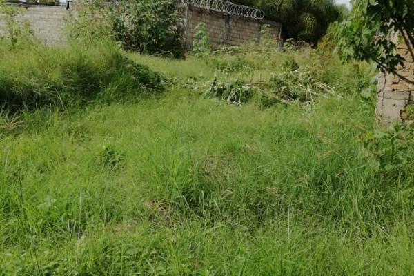 Foto de terreno habitacional en venta en nardo s/n , las juntas, san pedro tlaquepaque, jalisco, 5920293 No. 07