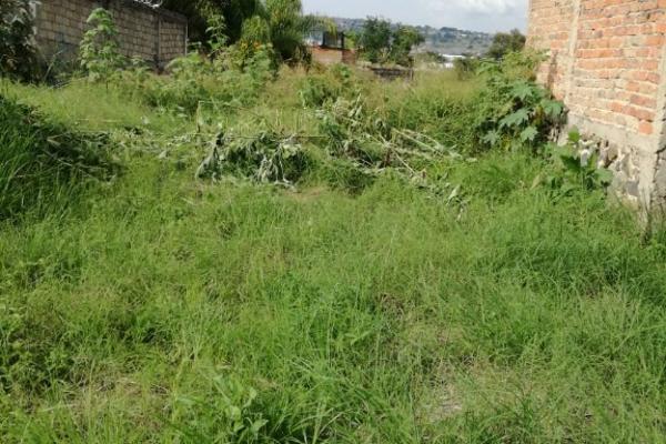 Foto de terreno habitacional en venta en nardo s/n , las juntas, san pedro tlaquepaque, jalisco, 5920293 No. 11