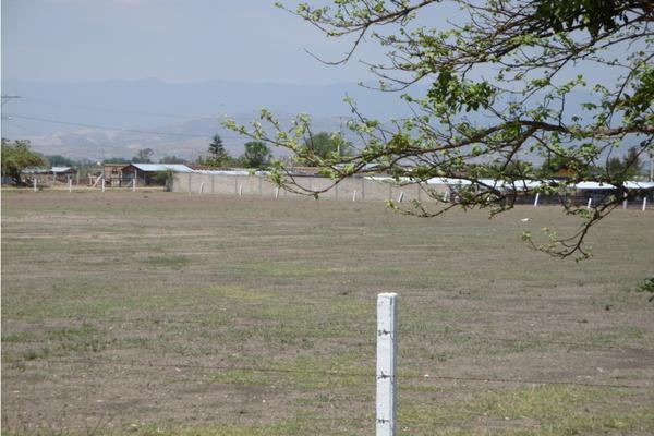 Foto de terreno habitacional en venta en  , nativitas etla, villa de etla, oaxaca, 19300716 No. 02