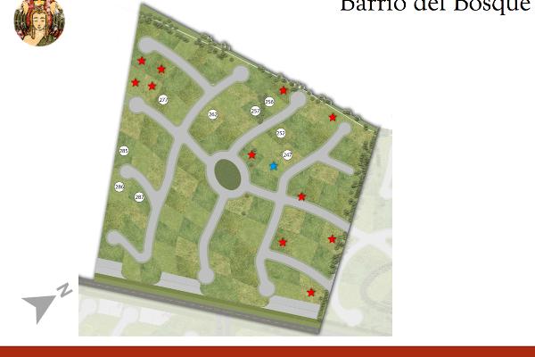 Foto de terreno habitacional en venta en  , nativitas, natívitas, tlaxcala, 2716652 No. 09