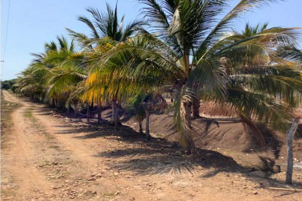 Foto de terreno habitacional en venta en  , nayarit, san blas, nayarit, 20395310 No. 06