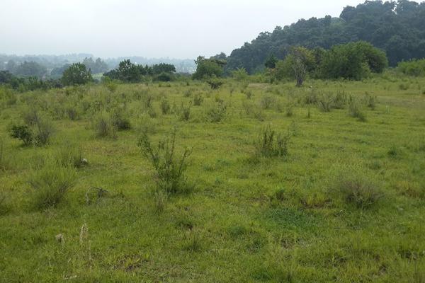 Foto de terreno habitacional en venta en  , nepantla de sor juana inés, tepetlixpa, méxico, 15241299 No. 01