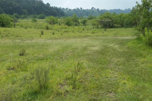 Foto de terreno habitacional en venta en  , nepantla de sor juana inés, tepetlixpa, méxico, 15241299 No. 03