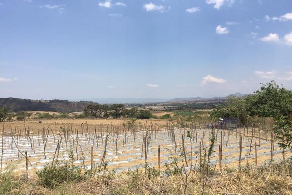 Foto de terreno habitacional en venta en  , nepantla de sor juana inés, tepetlixpa, méxico, 15241299 No. 04