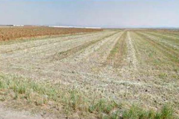 Foto de terreno comercial en venta en nextlalpan , los aguiluchos, nextlalpan, méxico, 20130703 No. 05