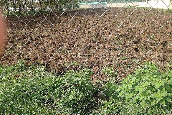 Foto de terreno habitacional en venta en nezahualcoyotl , san bartolo, acolman, méxico, 5665134 No. 05