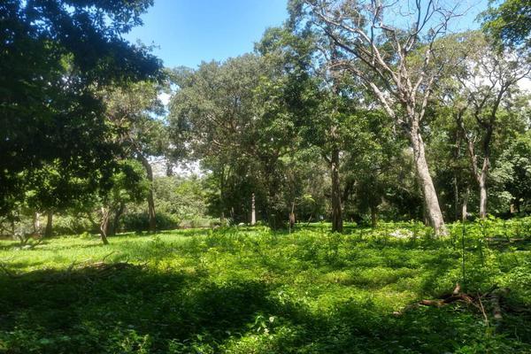Foto de terreno habitacional en venta en nicasio mendoza , comala, comala, colima, 0 No. 01