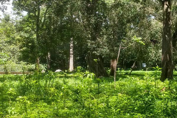Foto de terreno habitacional en venta en nicasio mendoza , comala, comala, colima, 0 No. 02