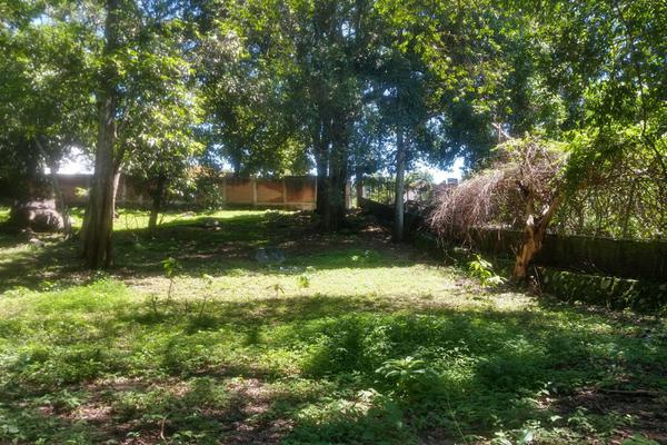 Foto de terreno habitacional en venta en nicasio mendoza , comala, comala, colima, 0 No. 03