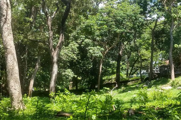 Foto de terreno habitacional en venta en nicasio mendoza , comala, comala, colima, 0 No. 04