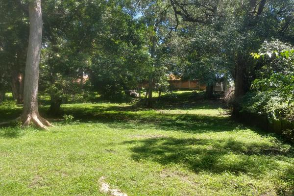 Foto de terreno habitacional en venta en nicasio mendoza , comala, comala, colima, 0 No. 06