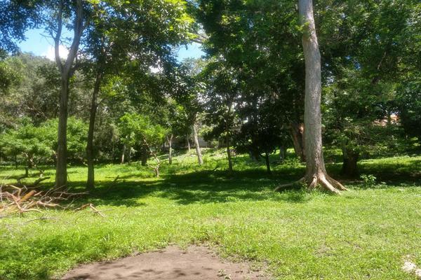 Foto de terreno habitacional en venta en nicasio mendoza , comala, comala, colima, 0 No. 10