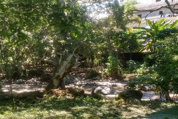 Foto de terreno habitacional en venta en nicasio mendoza , comala, comala, colima, 0 No. 13