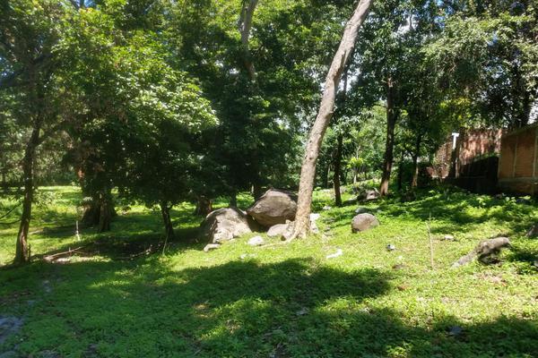 Foto de terreno habitacional en venta en nicasio mendoza , comala, comala, colima, 0 No. 14