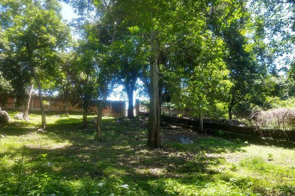 Foto de terreno habitacional en venta en nicasio mendoza , comala, comala, colima, 0 No. 15