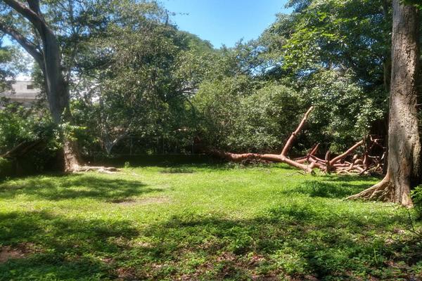 Foto de terreno habitacional en venta en nicasio mendoza , comala, comala, colima, 0 No. 16