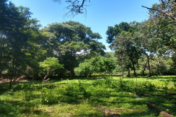 Foto de terreno habitacional en venta en nicasio mendoza , comala, comala, colima, 0 No. 18