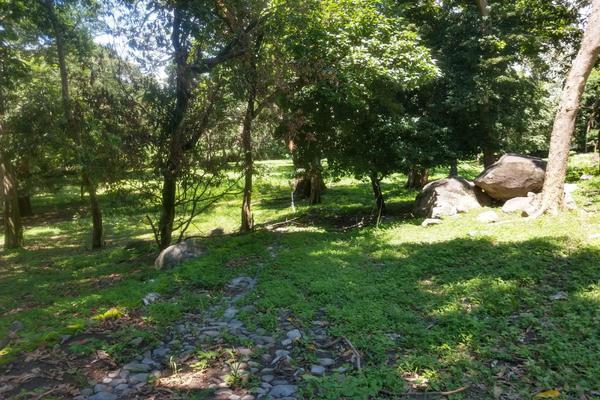 Foto de terreno habitacional en venta en nicasio mendoza , comala, comala, colima, 0 No. 21
