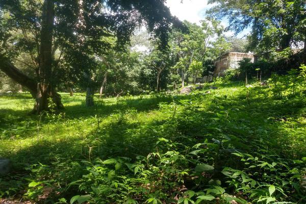 Foto de terreno habitacional en venta en nicasio mendoza , comala, comala, colima, 0 No. 25