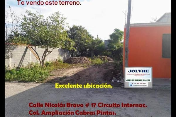 Foto de terreno habitacional en venta en nicolas bravo 17, cabras pintas, matamoros, tamaulipas, 11957754 No. 02