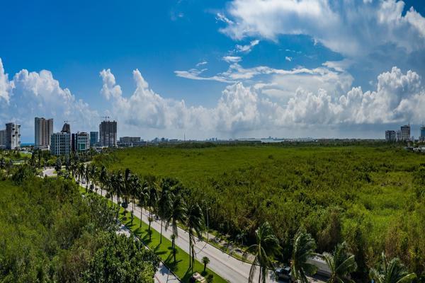 Foto de oficina en venta en nido puerto cancun, avenida bonampak 1 , cancún centro, benito juárez, quintana roo, 0 No. 18