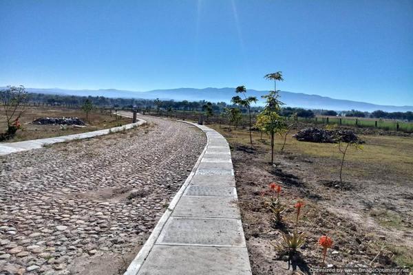 Foto de terreno habitacional en venta en niños heroes , casa de san miguel, san miguel de allende, guanajuato, 10213191 No. 13